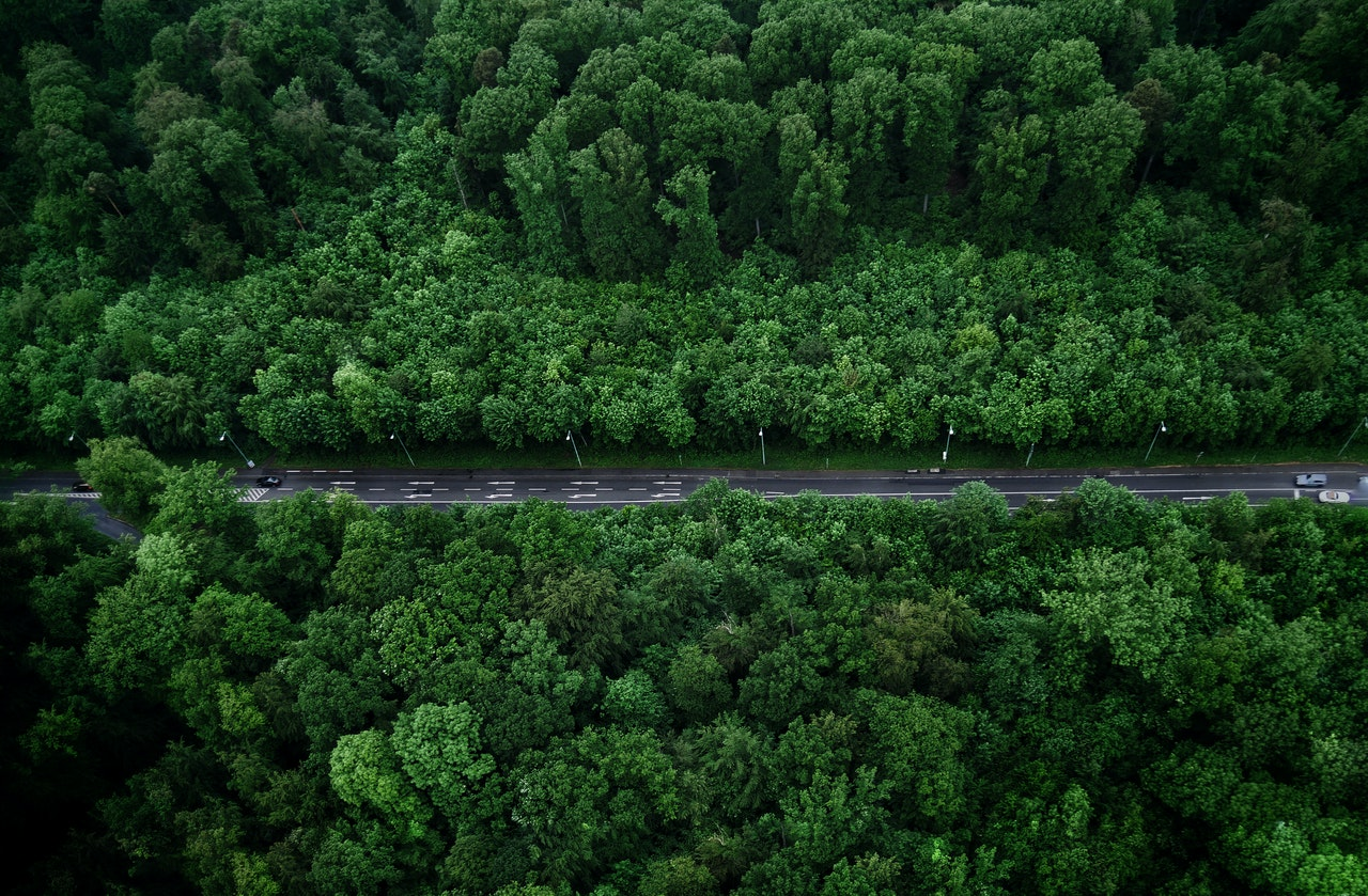 https://www.stkdrone.com/wp-content/uploads/2020/05/bird-s-eye-view-photo-of-road-with-trees-1099217.jpg